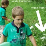 Raupen grossziehen – Schmetterlinge selbst gemacht light