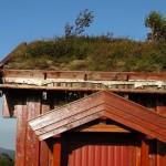 Ökologisches Bauen – eine ehrliche Betrachtung