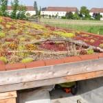 Windschiefes Dach – Hingucker für dein Bauwerk